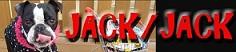 jack/jack