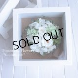【THANKS!】結婚式のフラワー電報に♪白いお花のフレーム(M)